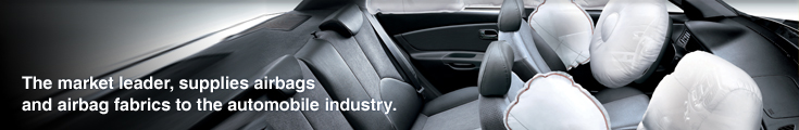 The market leader, supplies airbags and airbag fabrics to the automobile industry.