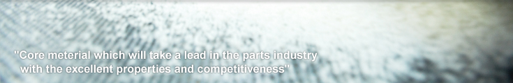Core material which will take a lead in the parts industry with the excellent properties and competitiveness